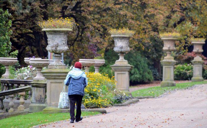 Walking along in Miller Park Pic: Tony Worrall