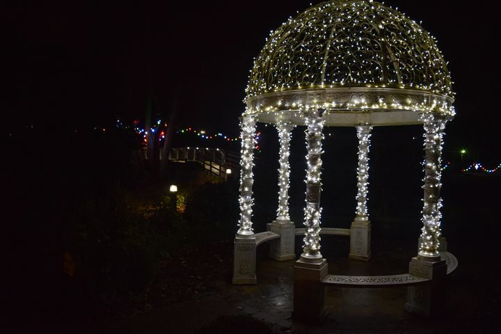 The grounds of St Catherine's Hospice will be decorated for the charity's Light Up A Life this Christmas