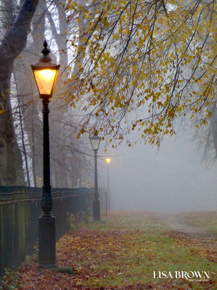 Avenham Colonnade Pic: Lisa Brown
