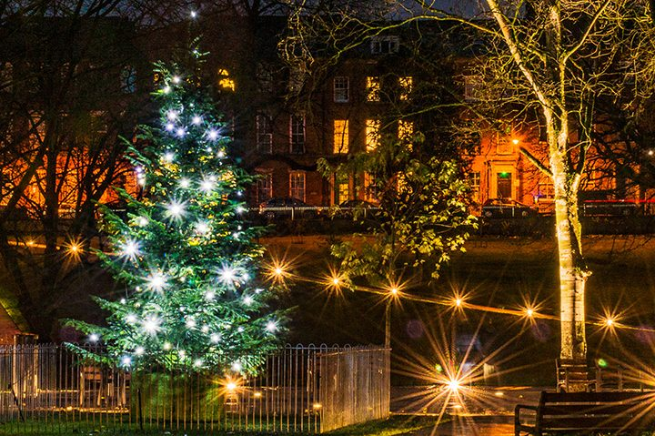 The Winckley Square Christmas tree Pic: Stephen Riley