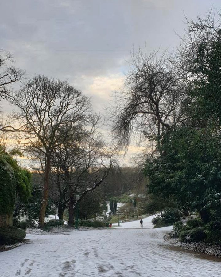 Avenham Park snow Pic: @shariqueshank