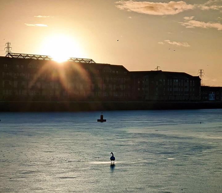 Frozen Preston Docks Pic: @canonsnapz