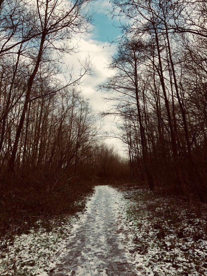 Haslam Park snowy path Pic: @emilymooney_98