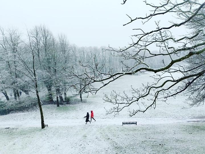 A snowy Avenham Park Pic: @jcwildman