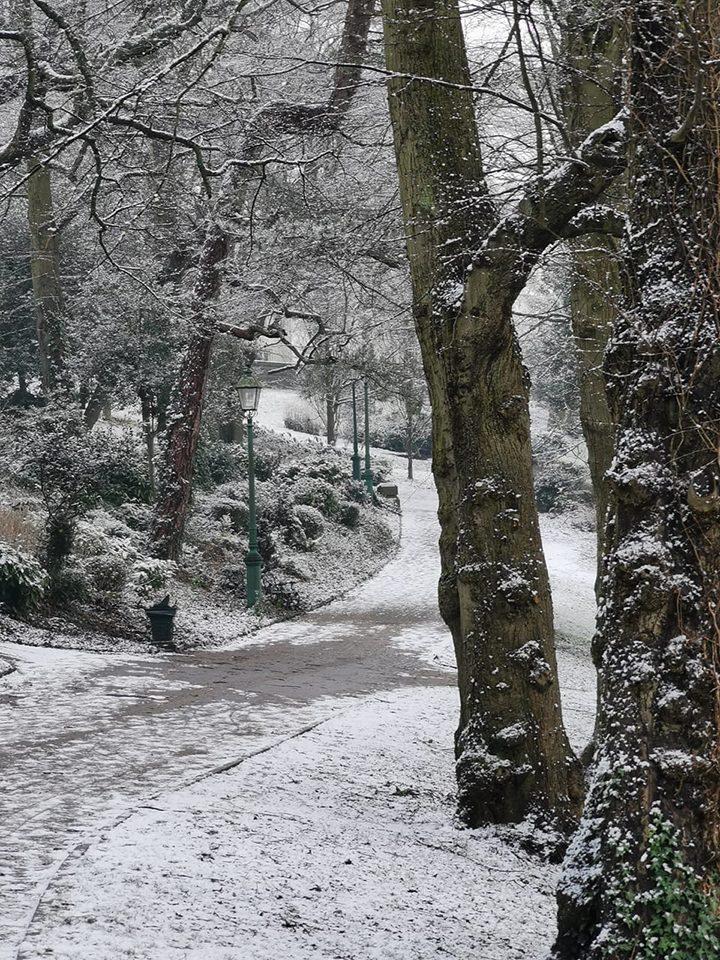 Snowy Avenham Park Pic: Chris Hough