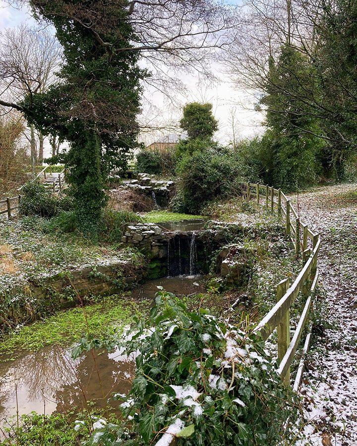 Snowy Haslam Park Pic: Anne Tucker