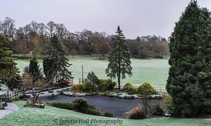 Snowy Japanese Garden Pic: @janettehall7