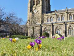 Spring blooms at Preston Minster in Preston city centre Pic: Tony Worrall
