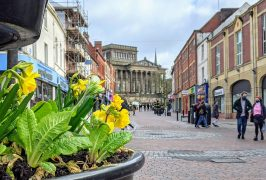 Spring flowers in Preston city centre in March Pic: Tony Worrall