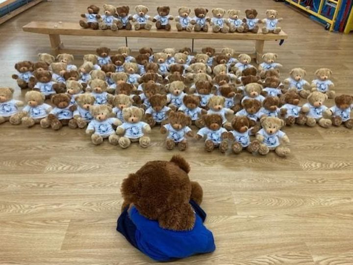 Catforth Primary School teddies