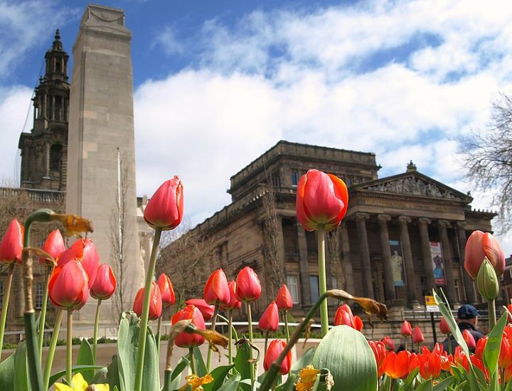 Spring flowers in Preston city centre Pic: Tony Worrall
