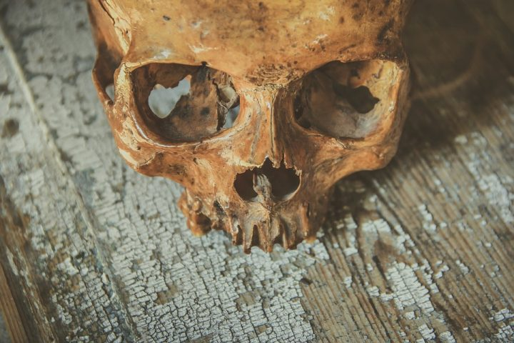 Skull Pic: Devanath / Pixabay