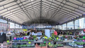 Under the Covered Market
