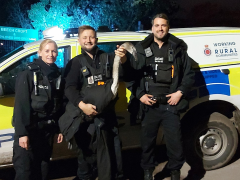 Police officers rescued the swan from Tag Lane